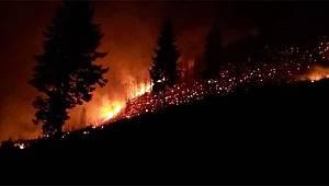 İçişleri Bakanlığı: Karadeniz'deki Yangınlarda Terör İzine Rastlanmamıştır