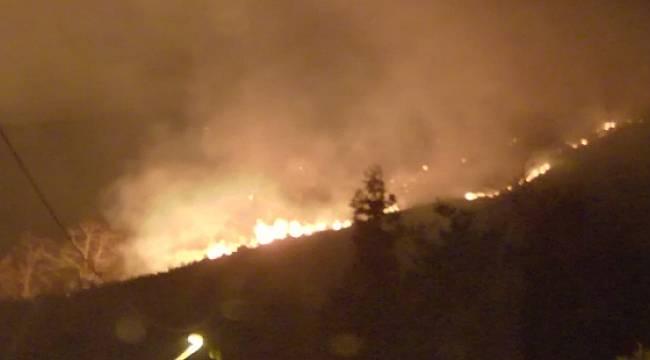 Karadeniz'de 7 İlde 150 Noktada Örtü Yangını