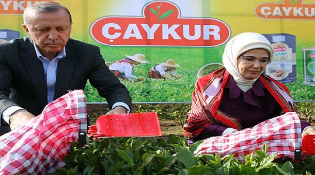 Cumhurbaşkanı Erdoğan, Yaş Tay Taban Fiyatını Açıkladı